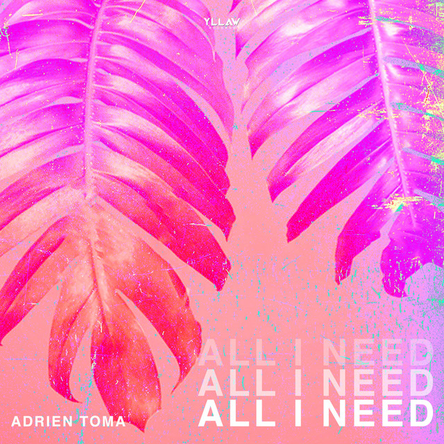 ADRIEN TOMA - All I Need