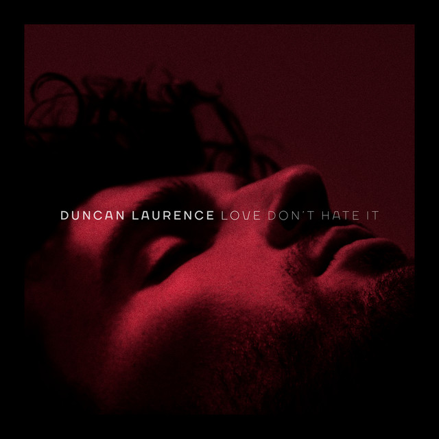 DUNCAN LAURENCE - Love Don't Hate It